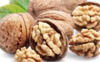 Как подготовить грецкий орех к зиме?