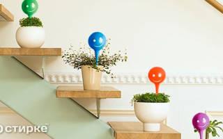 Как сделать полив комнатных цветов при длительном выезде из дома?