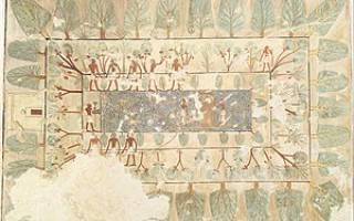 Приспособление для полива садов и огородов в древнем египте это