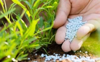 Природные удобрения для огорода