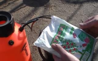 Обработка кустарников железным купоросом осенью