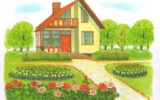 Рисунки комнатных растений с названиями для детей